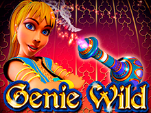 Игровой слот на биткоин Genie Wild
